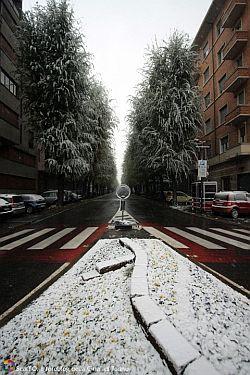 Corso Dante