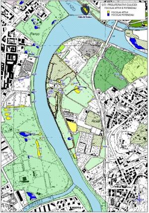 Mappatura del territorio comunale-3