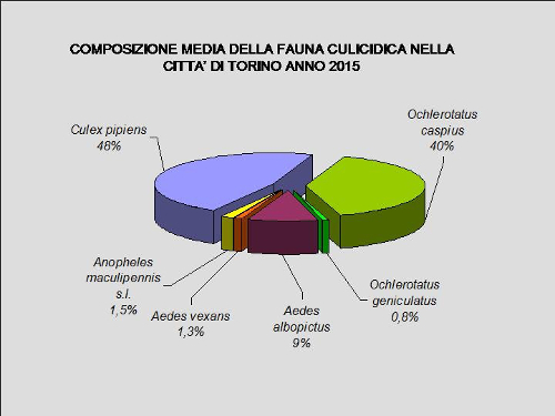 grafico1_2015-2