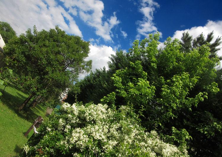 Area Verde Tonolli - Torino