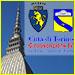 Torino e Circoscrizione 4, cultura online
