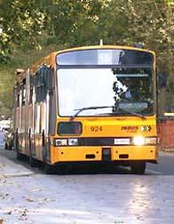 Bus 36