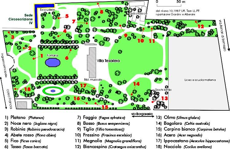 Circoscrizione4 mostra disegna il tuo giardino for Disegna il tuo giardino