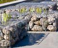 vasche che corrono lungo l'Envi park