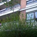 Orbassano 221 foto 003