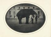 Archivio Storico di Torino
