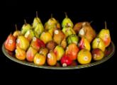 Museo della Frutta