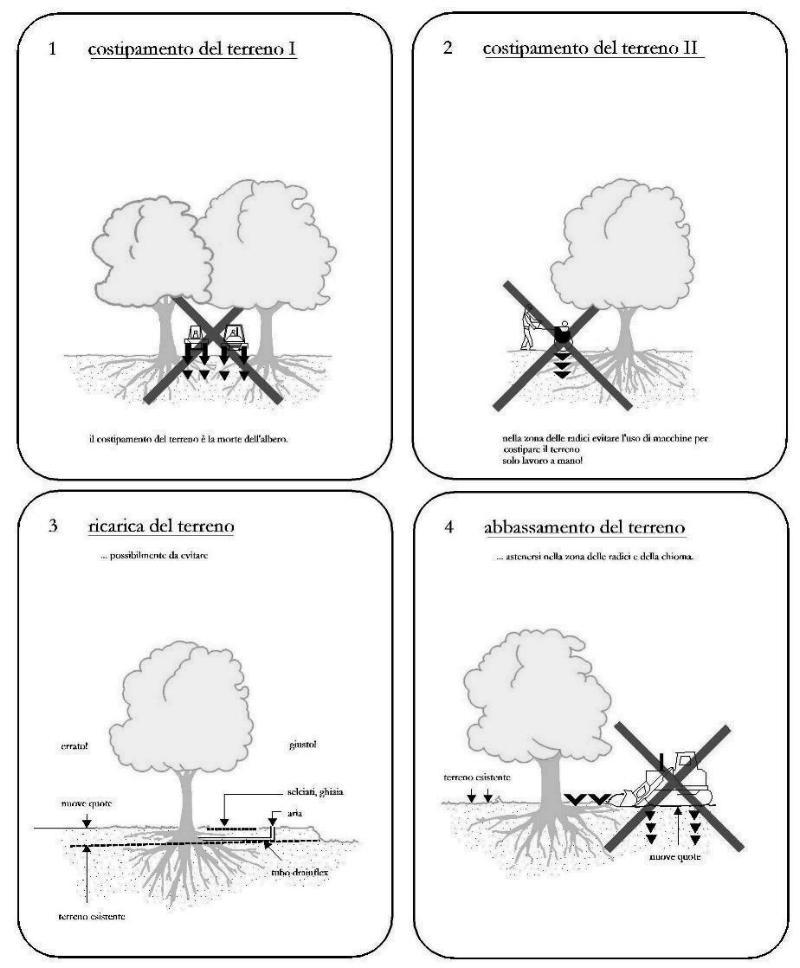 Una serie di schemi per la tutela degli alberi nelle aree di cantiere